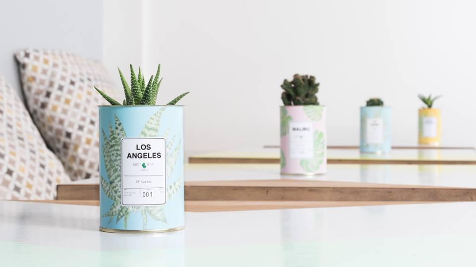 ay-cactus-personnalisable-deco